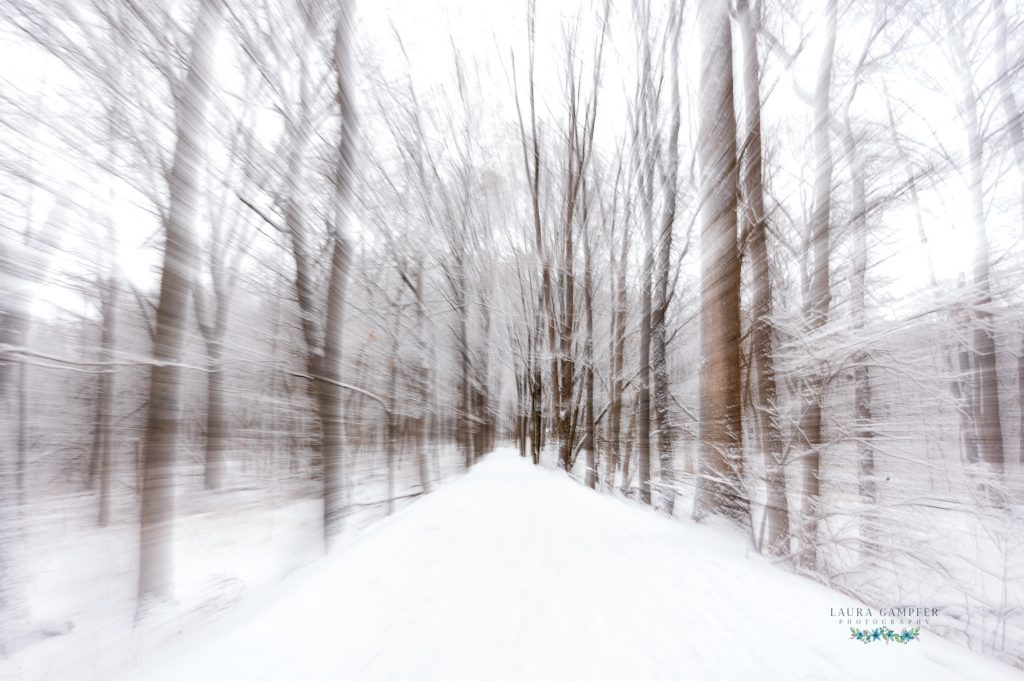 winter photography Kane County IL