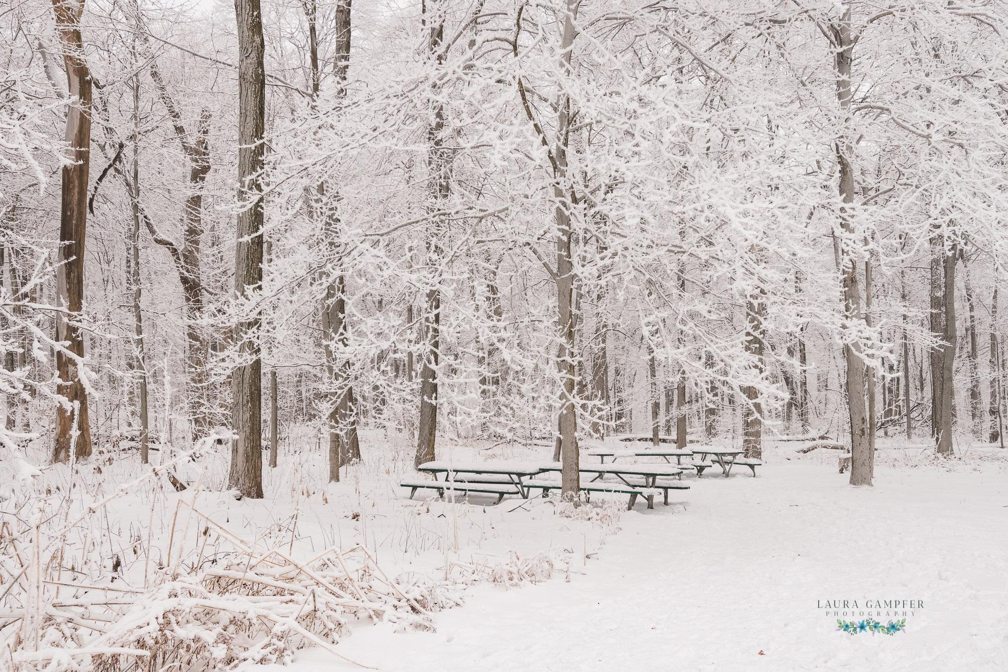 Illinois nature photography