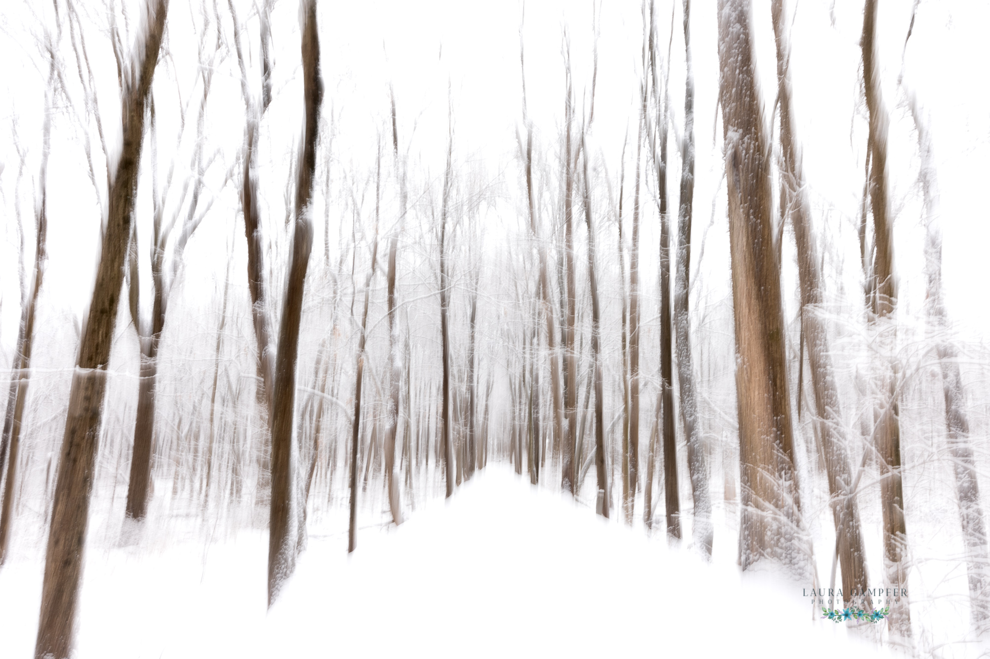 Kane County IL Forest Preserve Photography Snowy Trail