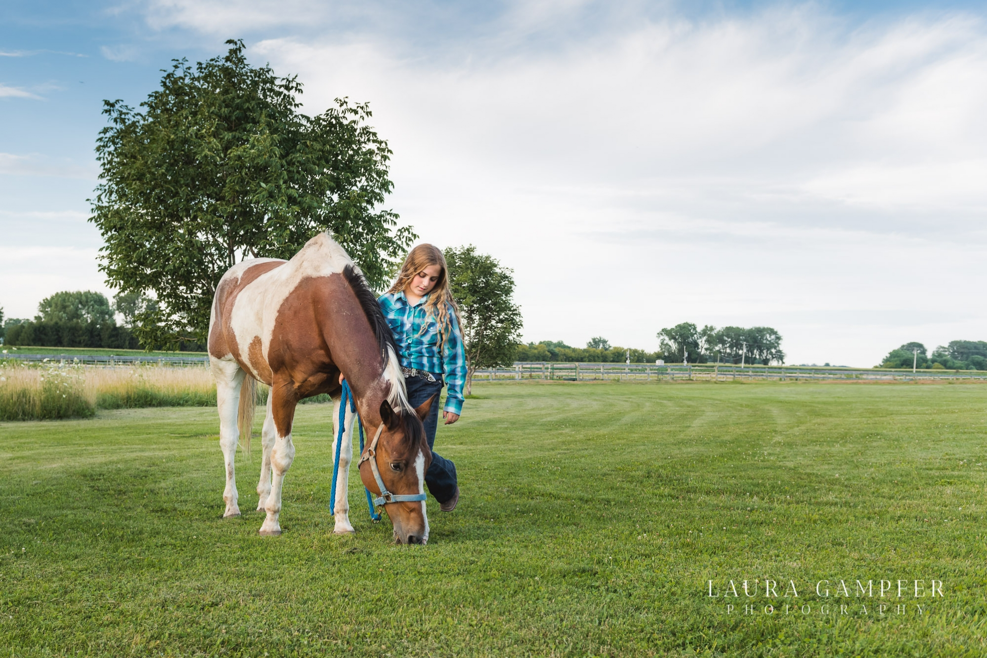 horse-photographer-kane-county-maple-park-il