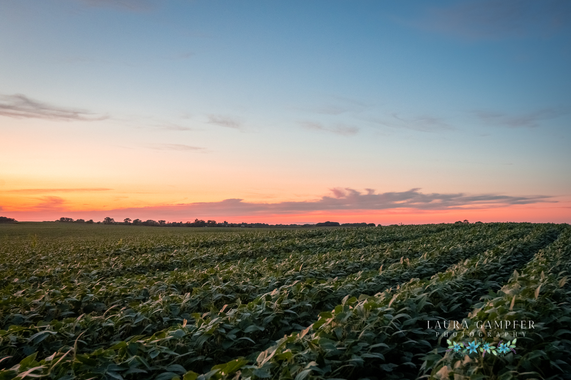 Illinois midwest farm photography