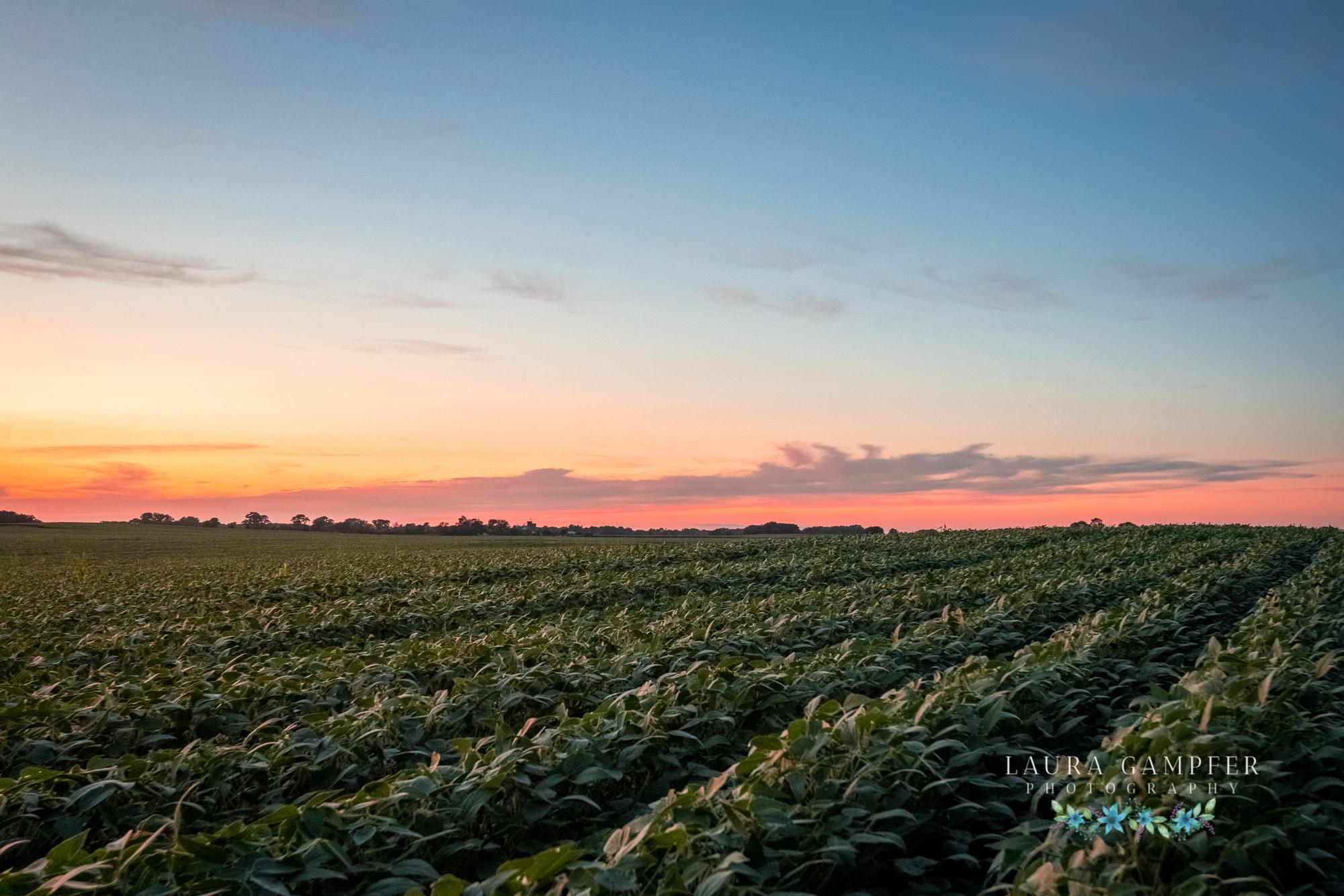 Illinois midwest farm photography