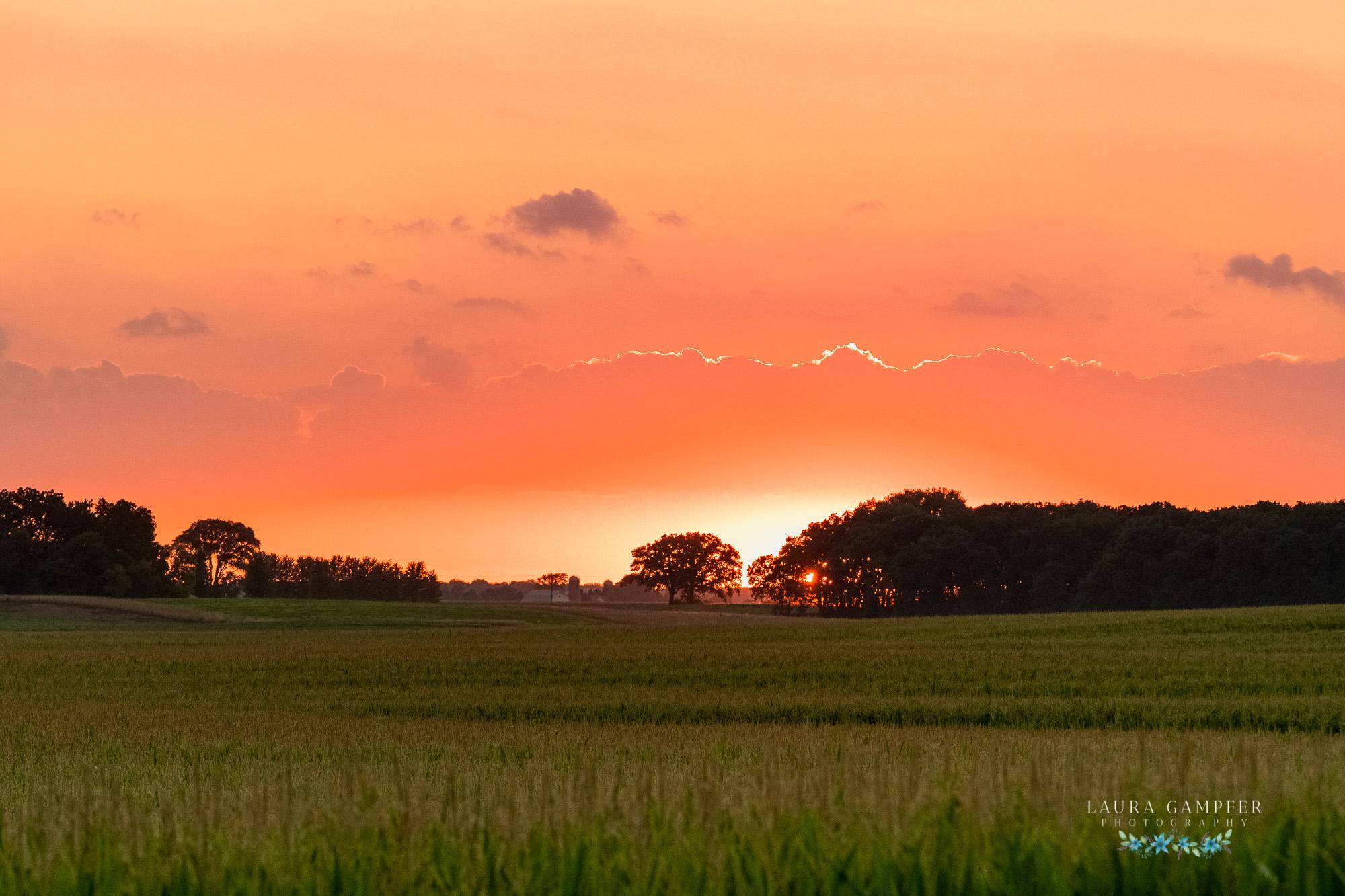 Illinois Farm Sunset over Corn Field Kane DeKalb County