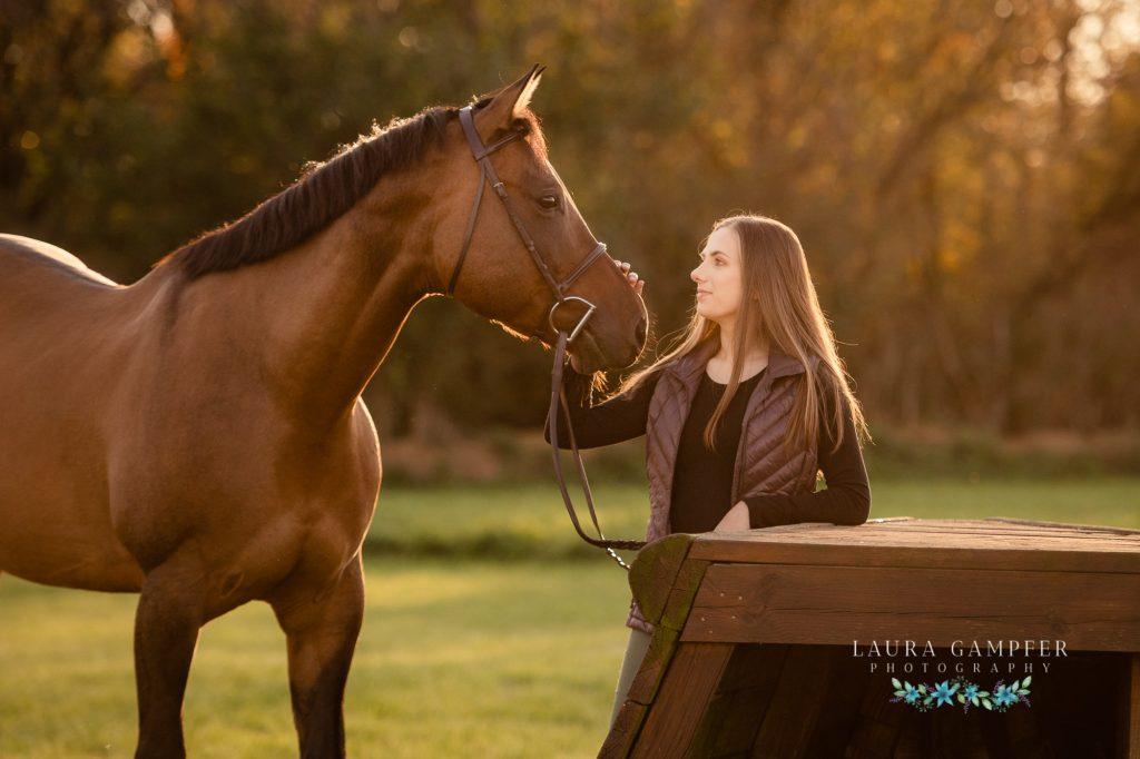 horse photography dekalb county il
