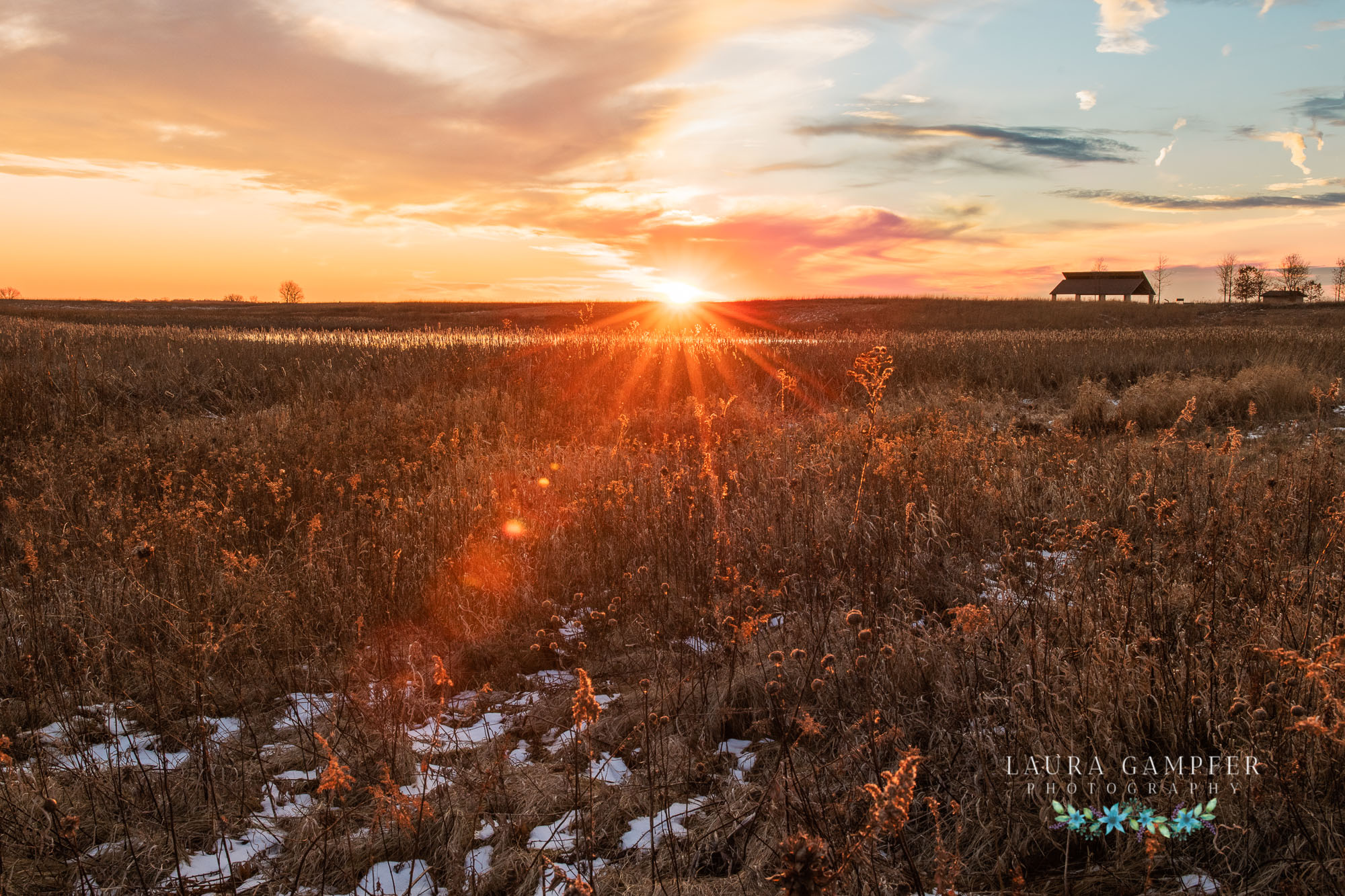kane-county-forest-preserves-laura-gampfer-photography