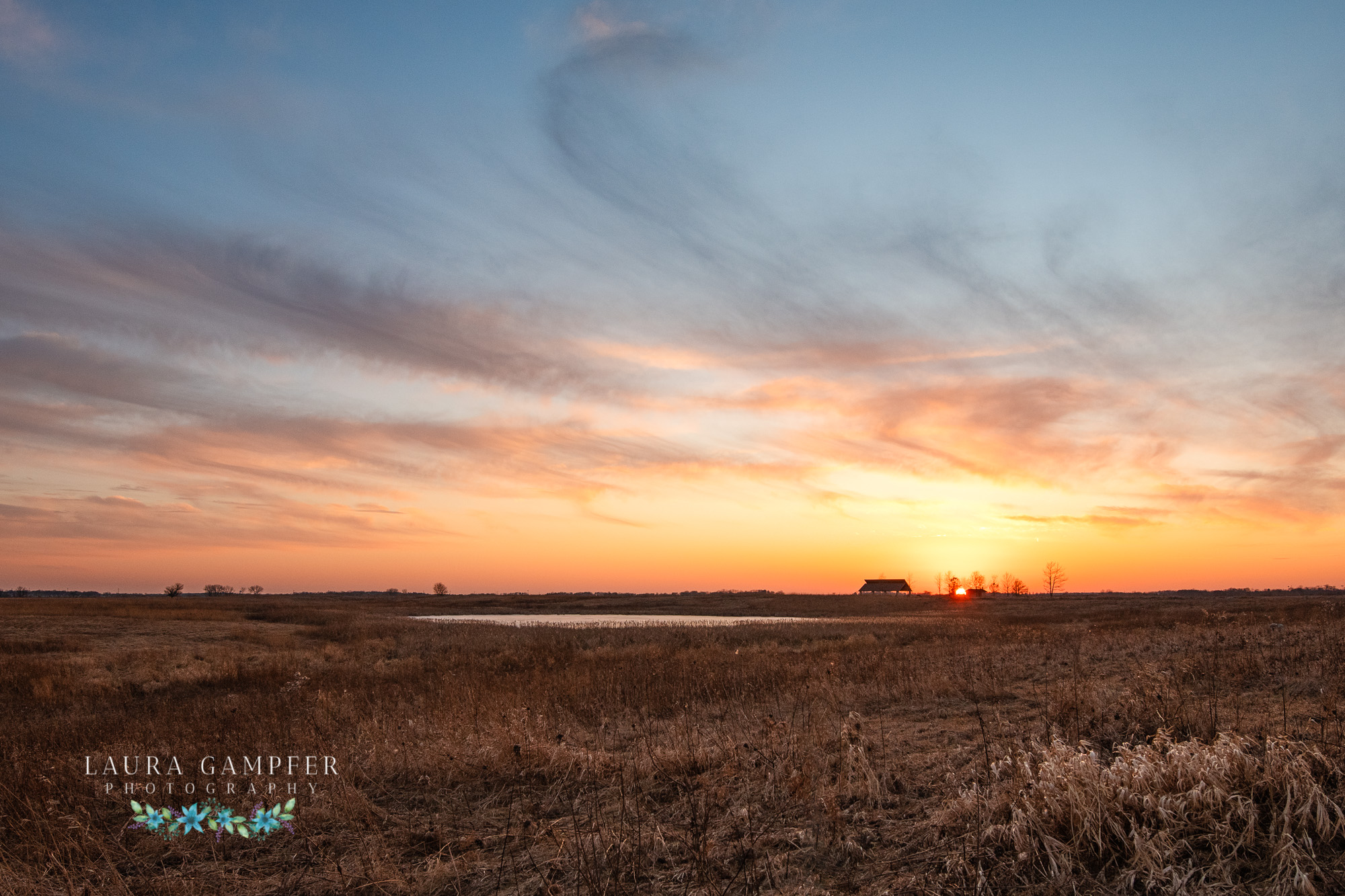 illinois-prairie-photos-laura-gampfer-photography