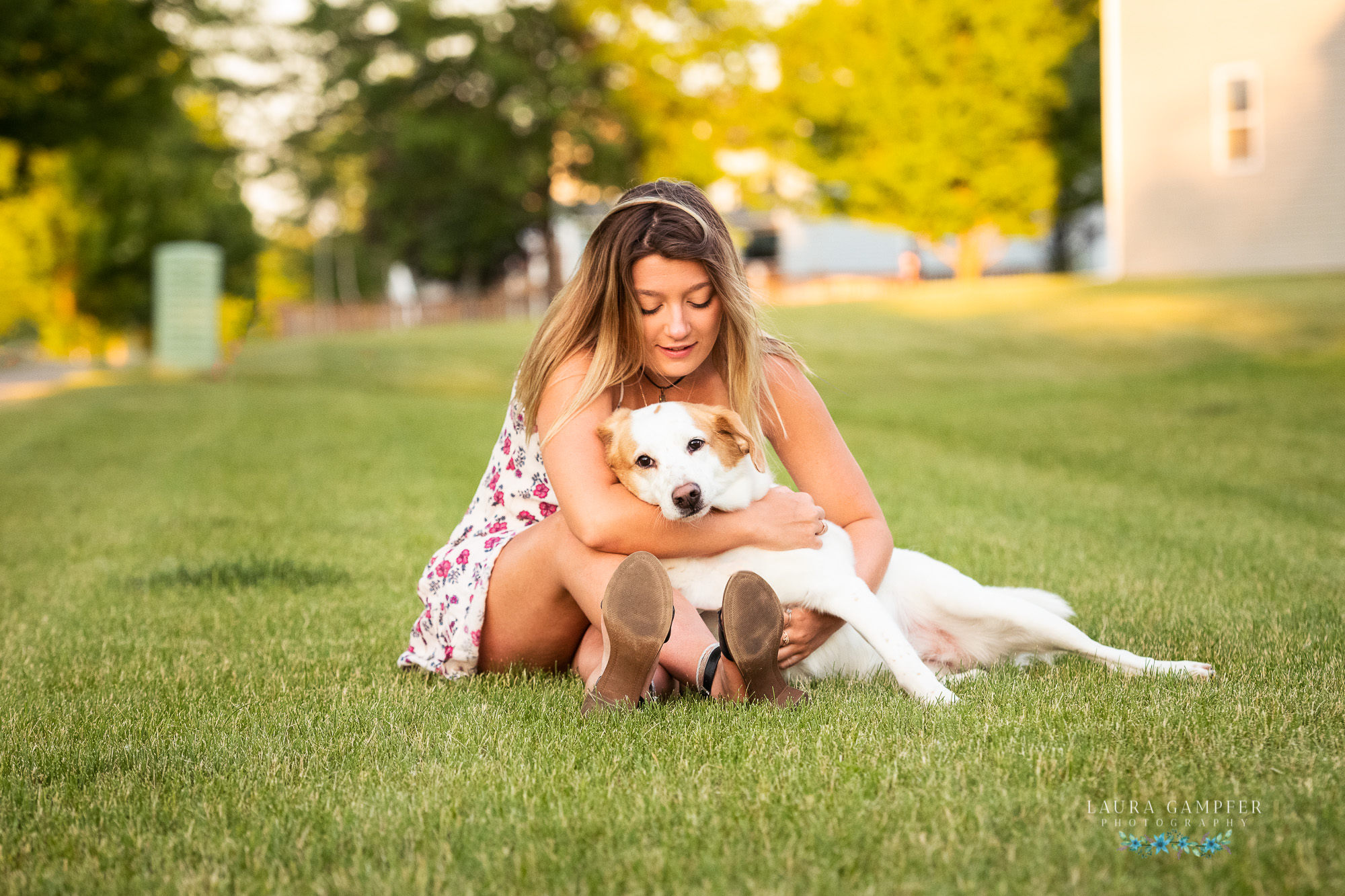 dog photography kane dekalb dupage county illinois