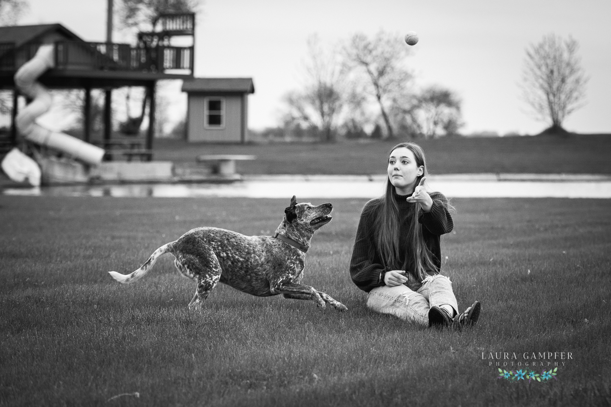 kane county il pet photographer